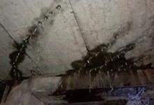 再造耐久防水层堵漏